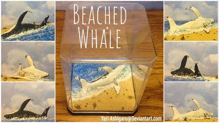 Beached Whale Diorama