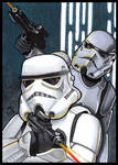 STORMTROOPERS PSC