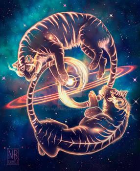Solar Twins - DTIYS Entry