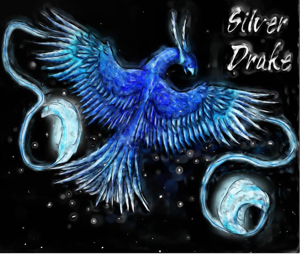 Silver-Drake's Profile Picture