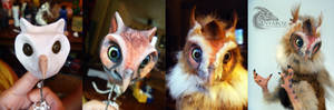 Owl room guardian process