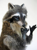 Jeremy the Raccoon Room Guardian by AnyaBoz