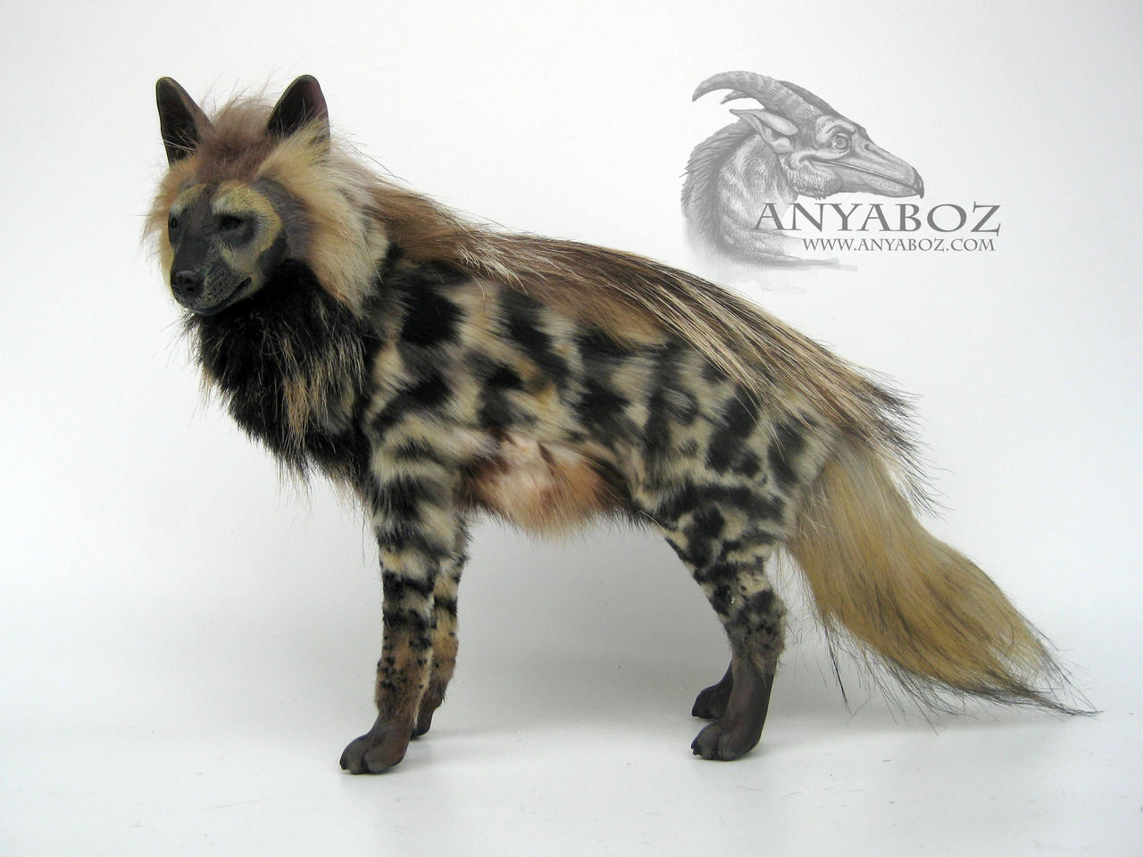 how to draw a striped hyena
