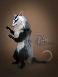 White Eared Opossum Room Guardian
