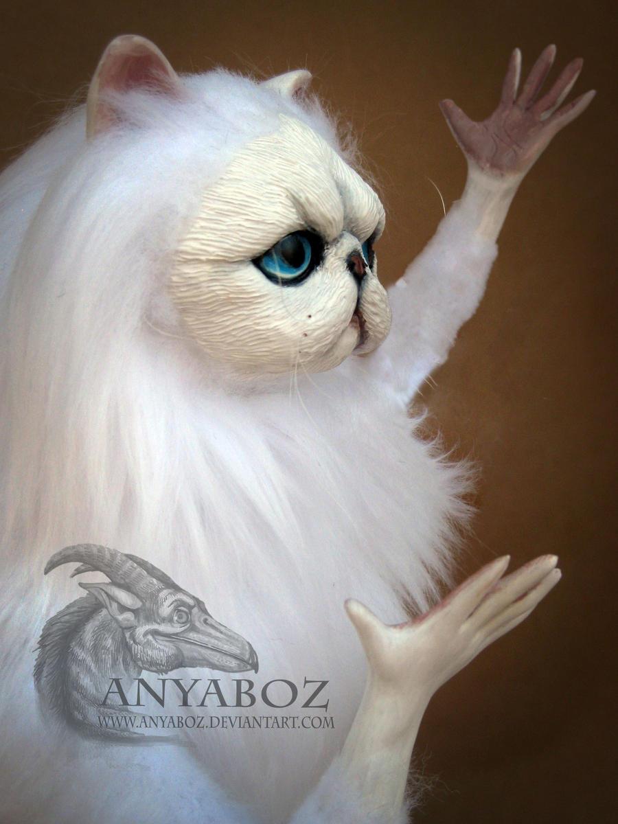 Persian cat room guardian amazon