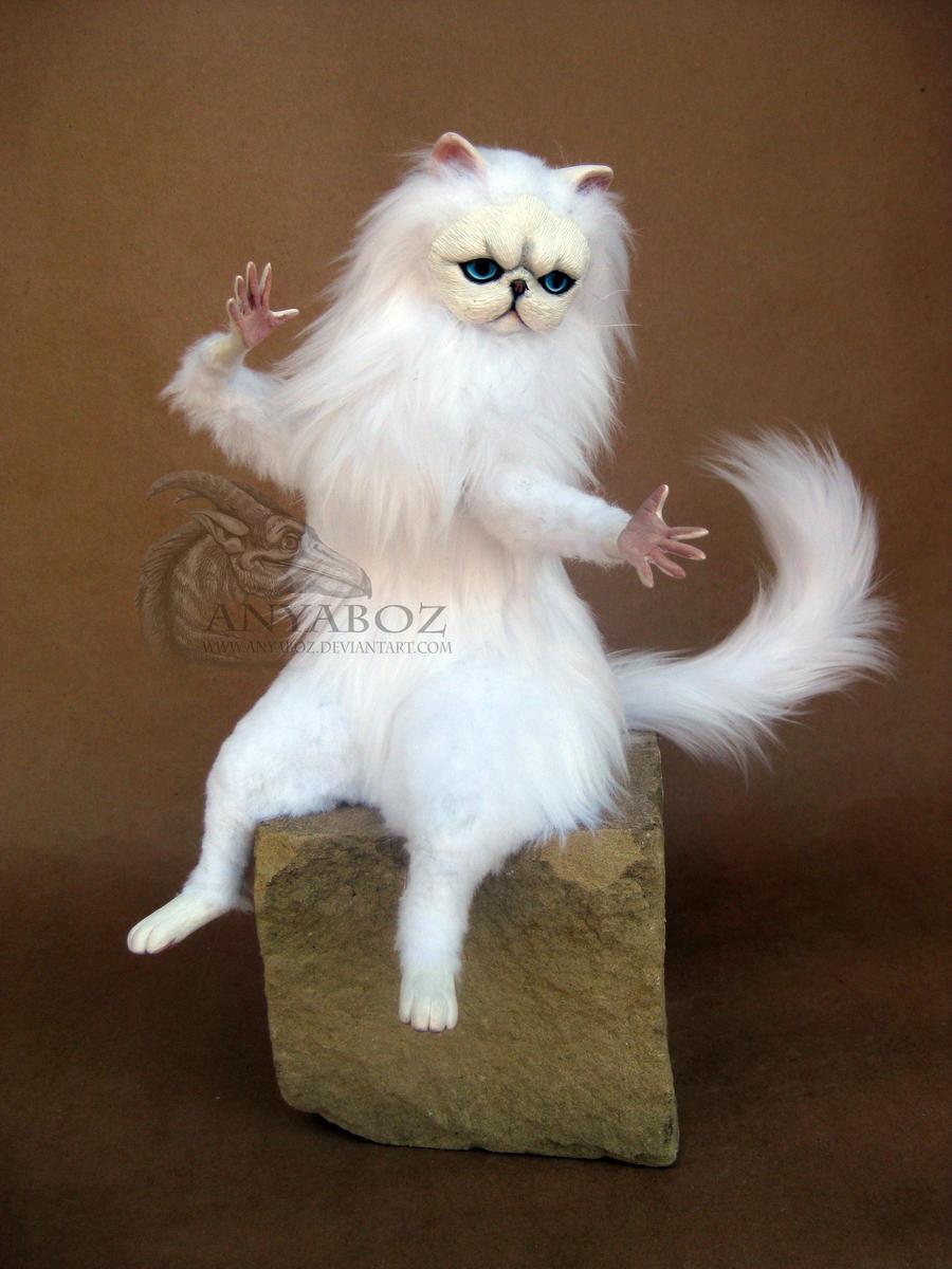 Funny White Cat Meme : New persian cat room guardian by anyaboz on deviantart