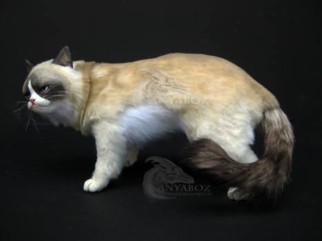 Grumpy Cat Room Guardian