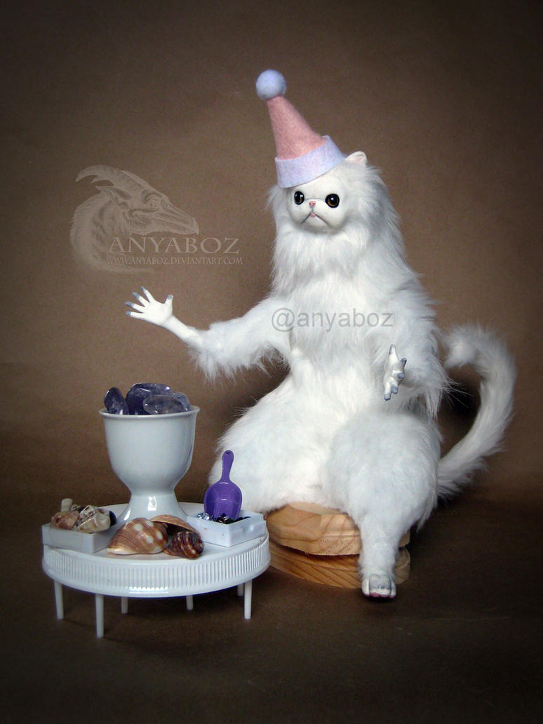 Persian cat doll meme