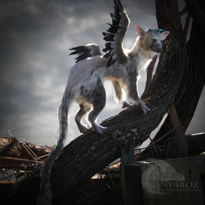 Trico the Last Room Guardian FOR AUCTION