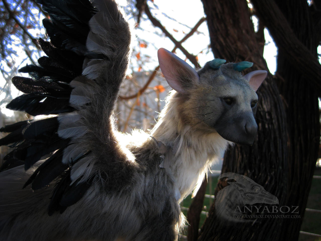 trico the last room - photo #4