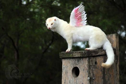 Winged Mink Room Guardian
