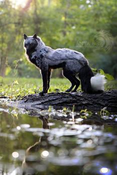 Silver Fox Room Guardian
