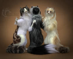 Pretty Kitty Room Guardians