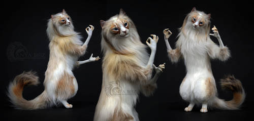 Ragdoll Cat Room Guardian by AnyaBoz