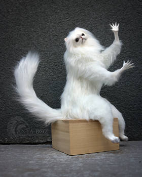Persian Cat Replica AUCTION