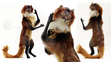 Somali Cat Room Guardian FOR AUCTION by AnyaBoz