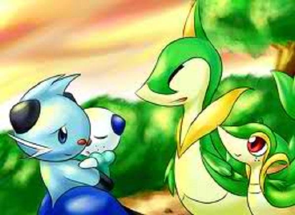 Pokemon Family Images
