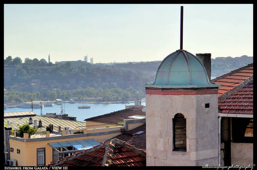Istanbul from Galata III