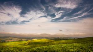 Northumberland Landscape 2