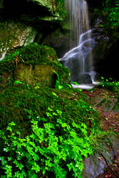 Roughting Linn Waterfall 4