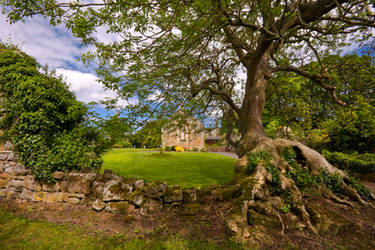 Hulne Priory by newcastlemale