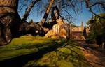 Hulne Priory 2