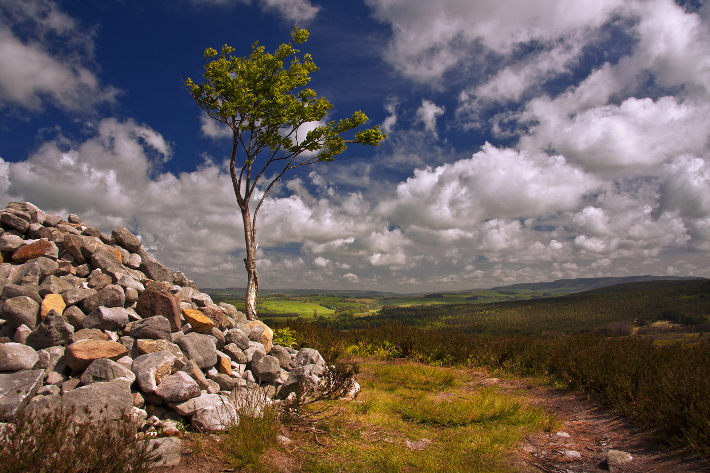 Northumberland Landscape 5 by newcastlemale