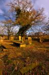 Northumberland Graveyard