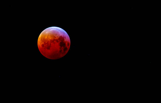 Blood Wolf Moon