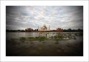 Taj Mahal - 8 by tyt2000