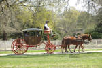 Stock Photo: Horse and Cart 1