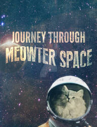 Journey through Meow-ter Space
