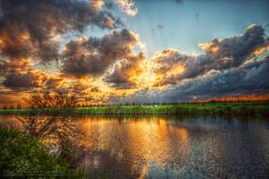 Golden Sunset by Scorpidilion