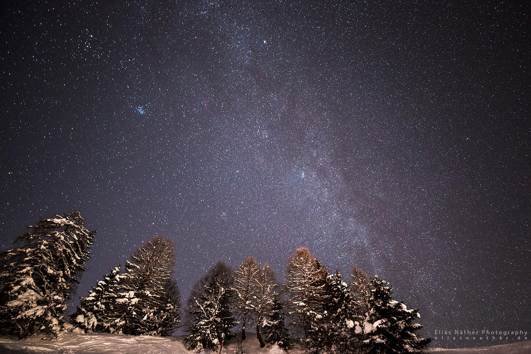 Forest Milkyway by Scorpidilion
