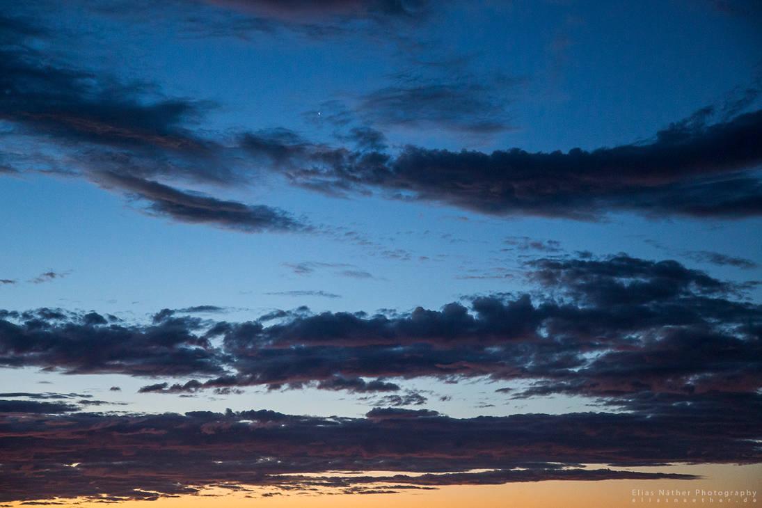 Good Morning Venus by Scorpidilion