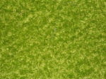 Fabric Texture 17