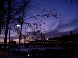 Night Sky of Paris by luncatic
