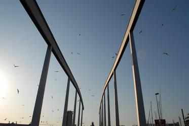 Symmetry in Barcelona by 13thFox