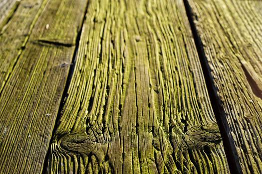 Tactile Green