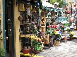 Idyllwild Shop by misosouper