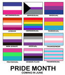 Pride Month Flags