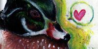 quack. by ickle-weirdo