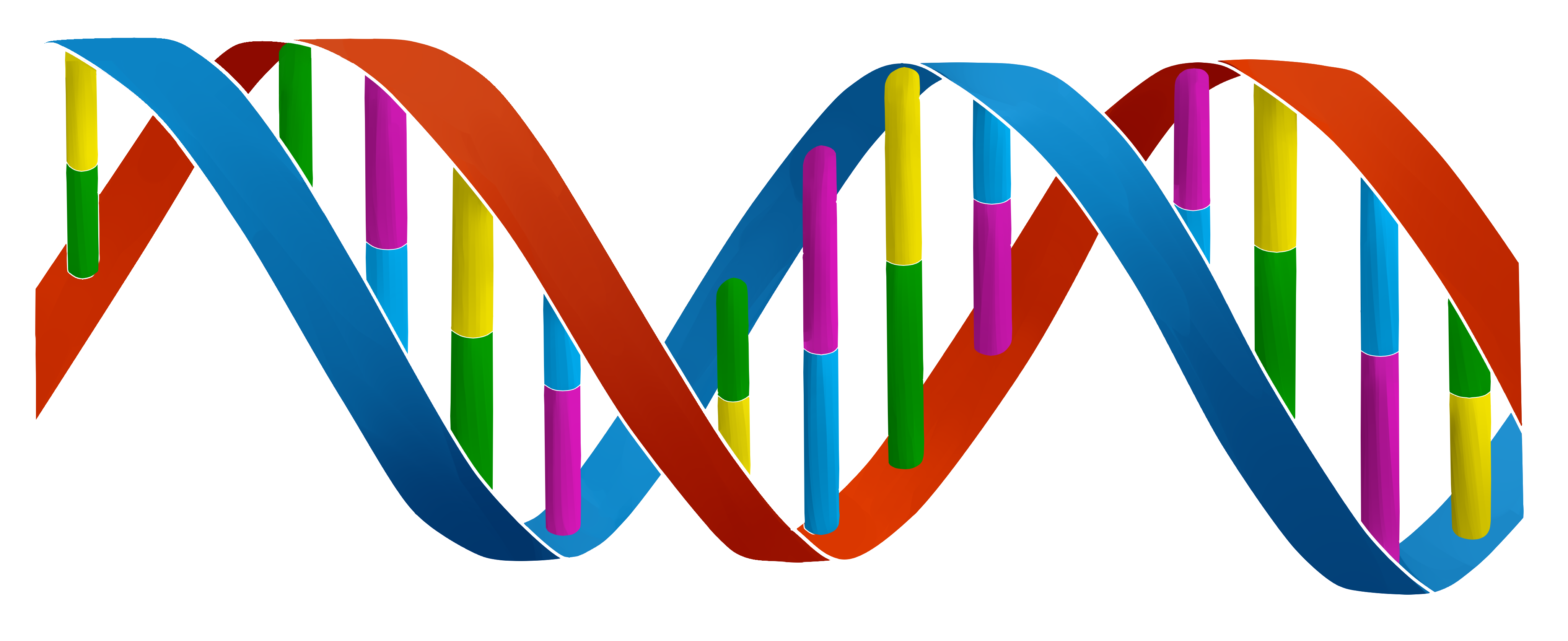 Commision for DNA Projecten BV Version 1 (LOGO) by ...