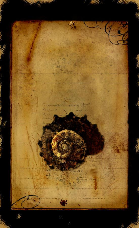 Book cover design 1 by mar-ius