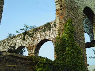 Arches and Ivy I