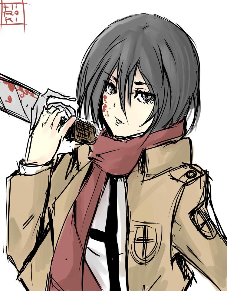Shingeki No Kyojin Mikasa By Hirokiart On Deviantart