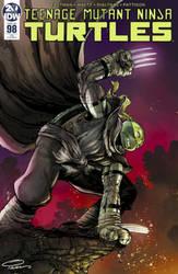 Teenage Mutant Ninja Turtles #98 RE Cover