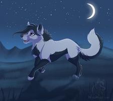 Night Run by WindWo1f