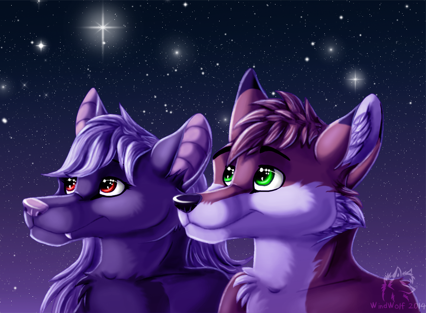 Star Gazers by WindWo1f