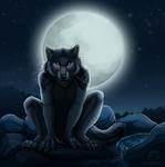 Silent Watcher